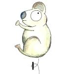 K-Koala