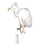 V-Vulture